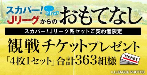 banner_480_245